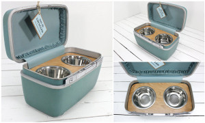 Traveller-Train-Case-Dog-Food-Storage