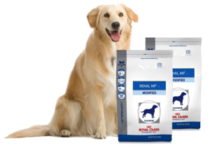 Royal-Canin-Canine-Renal-MP14-Modified-Dry-Dog-Food