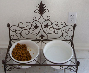 Stylish-Steel-Elevated-Dog-Bowl-Stand