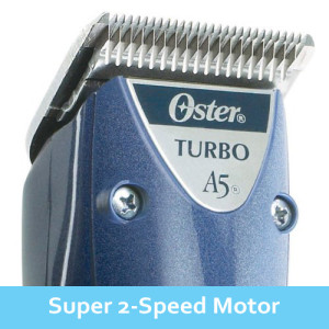 Oster-A5-Turbo-2-Speed-Motor