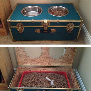 old-trunk-raised-dog-feeder-with-storage